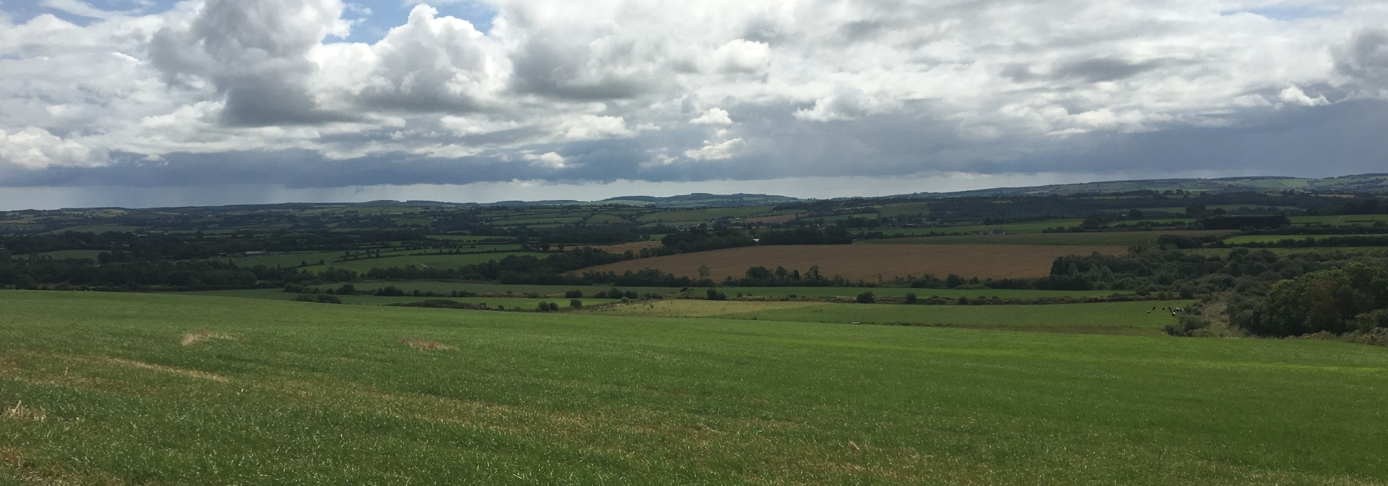 80 Acres Agricultural Land : Currabeha, Fermoy, Co. Cork